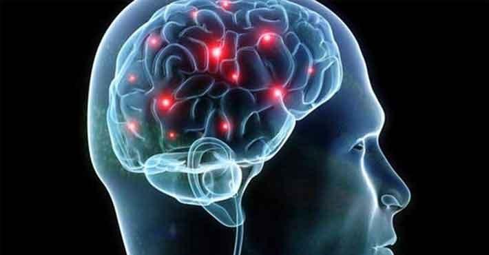 Επιστήμονες με επικεφαλής Ελληνα ανακάλυψαν ότι υπάρχει «αυτόματος πιλότος» στον εγκέφαλο
