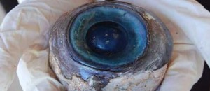 Μυστηριώδες μάτι ξεβράστηκε σε παραλία